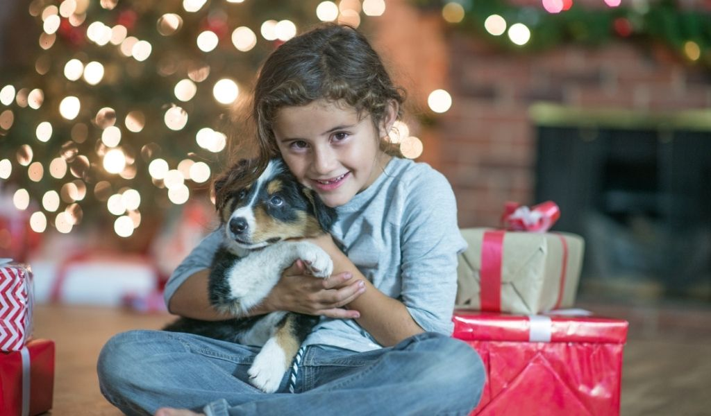 16 Re-BARK-able Gift Ideas for New Puppy Owners